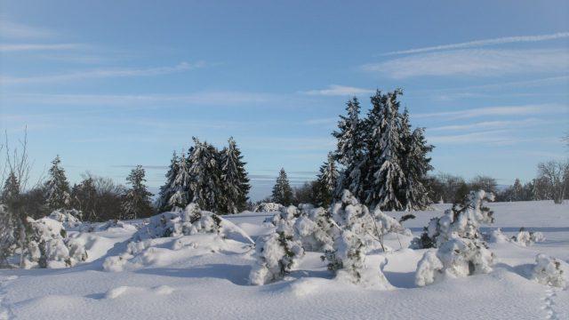 Winter ideeën